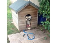 Wooden Dog Kennel .