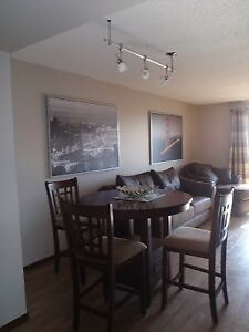 Fully Furnished 1 Bedroom Downtown Condo
