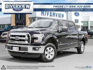 2016 Ford F-150 XLT1.9% Financing!!! Free Extended Warranty!!!