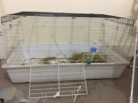 Used Indoor Rabbit Guinea Pig Bird Cage