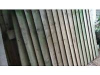 Fence panels and post