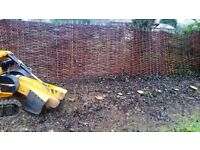 Tree stump grinding Manningtree