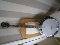 Fender five string banjo