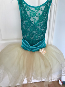 Ballet Costume - Lace, velvet and tulle - Fit for a princess