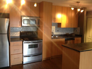 1br - open concept, modern, bright - available Sept 1