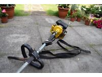 Petrol Strimmer - doesnt start spares repairs