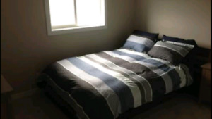 Looking for a quiet male to share accommodations!