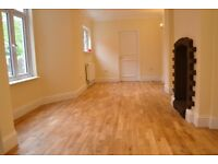 FANTASTIC NEWLY REFURBISHED 2 DOUBLE BEDROOM GARDEN FLAT NR ZONE 2 NIGHT TUBE, 24 HOUR BUSES & SHOPS