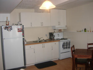 DOWNTOWN PEACE RIVER APARTMENT