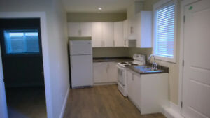 Like New 2 Bedroom Suite