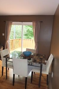 4 bedroom house, fully furnished everything included