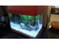 Fish tank with built in light an filter