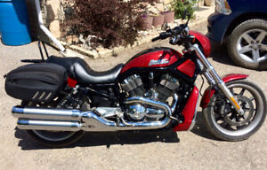 2006 Harley Davidson V-rod - looking for quick sale - Offers??