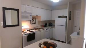 Great 2 Bedroom Apartment for Rent Minutes to Downtown Cambridge