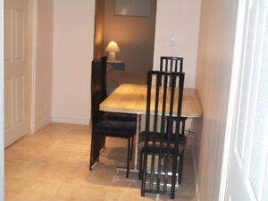 Spacious Studio in Basement with Private Entrance
