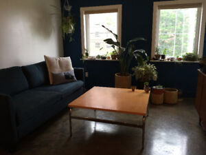 ROOMMATE WANTED- Pet Friendly North End Spacious Apartment