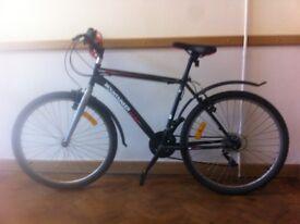Mountaineer bicycle