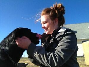 Morinville Area Pet/Farm Animal Sitting and Dog Walking