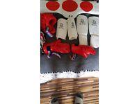 BLITZ Taekwondo karate martial arts protection body armour, helmet