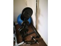 Weight plates, barbell + dumbbells X 2, and plate stand