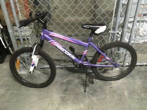 Purple Supercycle Bike - $75.00