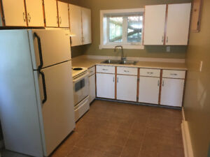 2 bedroom above ground basement apartment in the Goulds.