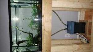 29 gallon aquarium fully equiped