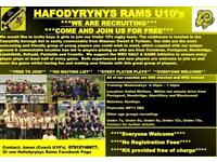 hafodyrynys mini and juniors rugby