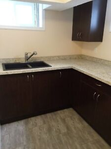 INNER CITY Furnished 2bedroom Basment apartment
