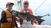 Salmon Catcher fishing charters starting at $230