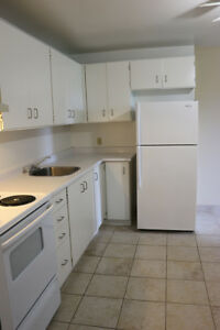 STUDENTS: Walk to class! Ridgetown 2 Bedroom Apartment for Rent