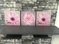 BARGAIN £3 Pink Floral Canvas Trio Set - Whitefield
