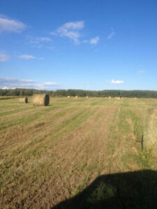 *2016 / 2017 Round Bales of Hay** located in Vanderhoof