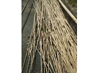 10 bamboo canes for garden stakes etc, more available