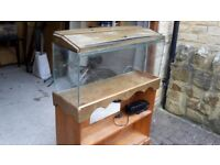 100 litre aquarium with stand and external pump/filter