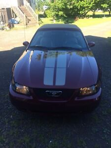 2004  ford Mustang convertible, must see!