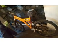 Specialized FSR combo