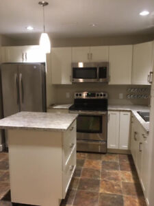 Modern 1bedroom suite for rent in Salmon Arm