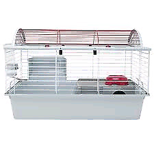 Cage a lapin 50$