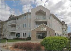 Condo Across from Northgate Mall