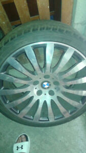 """BMW rims and tires 19""""."""