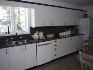 REDUCED,kitchen cabinets