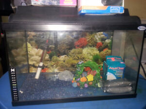 fish tank with all accessory included