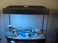 interpet panoramic 64 litre fish tank with accessories