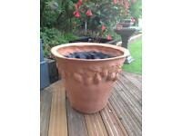 Bespoke Citrus planter 60cm high x 67cm diameter