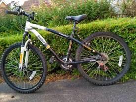 Reebok Thunder bicycle