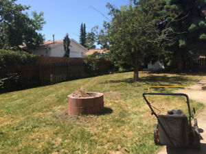 Millwoods house for rent August 15/ Sept 1