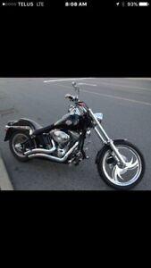 2001 Softail Harley Davidson