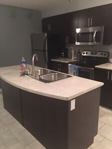 Looking for roommate to share condo downtown near MacEwan/Nait