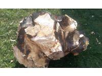 Large Tree stump (for burning logs)